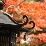滋賀で紅葉を車椅子でも見に行きたい!駅近の名所と見頃シーズンは?