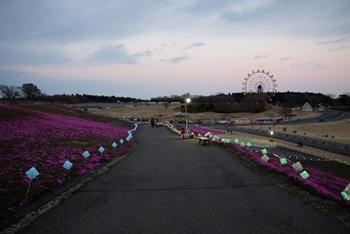 千葉の東京ドイツ村に宿泊。近くにホテルある?ホテル三日月はどう?