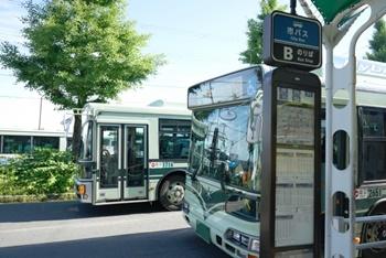 東京ドイツ村へ姉ヶ崎駅からバスでの行き方。帰りの便ある?裏技アリ