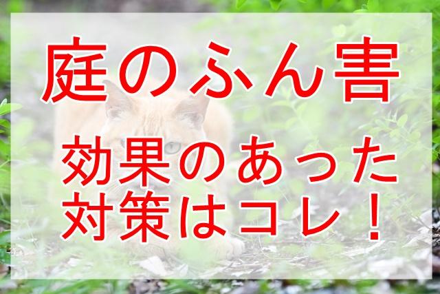 猫のフンが庭の芝生にあった時の対策~ふん害で一番効果が出た方法を公開