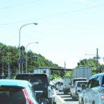 河津桜まつりへ車は混雑?渋滞避けるには途中から電車プランはどう?
