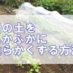 粘土質の土を柔らかくする方法!畑の固い土を簡単にふかふかに土壌改良するには…