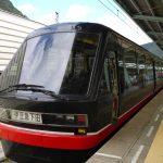 河津桜への電車混雑する?混む?指定席取れる?ツアー日帰りあるの?