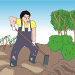 土を柔らかくする道具5選!これで固い土もホカホカにできる!(^^)!