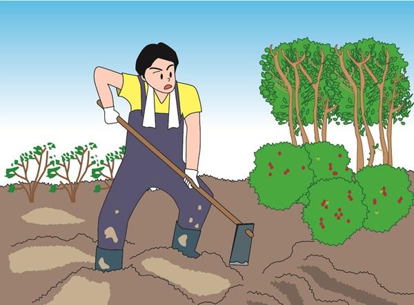 畑を耕す男性