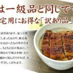 国産うなぎ通販 訳ありで人気はコレ!愛知鹿児島静岡産のウナギ蒲焼の格安ランキング